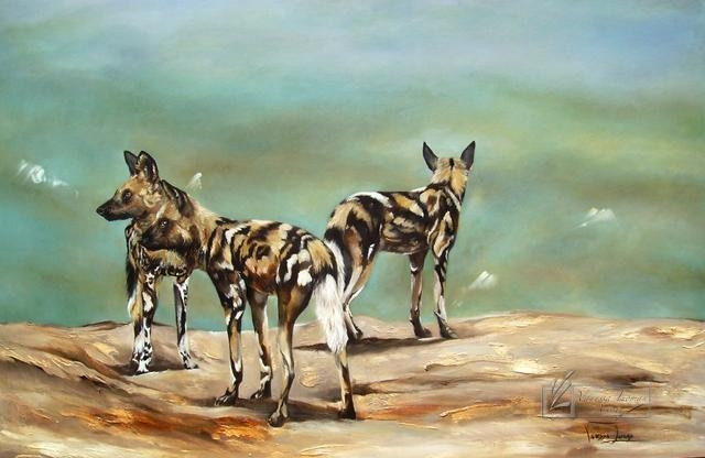 WILD DOGS ON THE LOOKOUT