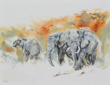 3 TUSKERS, ELEPHANTS -  OIL ON CANVAS - 1.7 x 2.2m