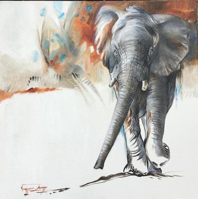 ELEPHANT MARCH - OIL ON 100% COTTON CANVAS - 50 x 50cm