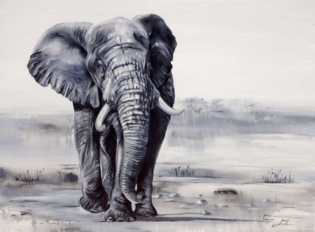 AFRICAN ELEPHANT - OIL ON CANVAS - 90 x 120 cm