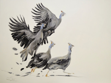 FLIGHT OF THE GUINEAFOWL - OIL ON CANVAS - 90 x 120 cm