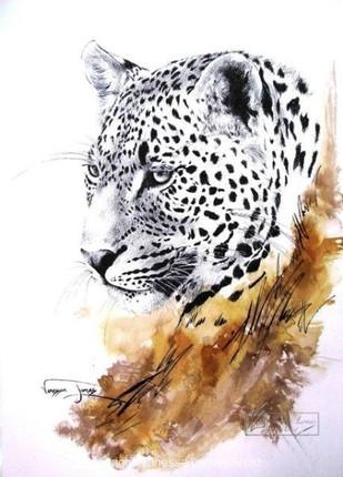 MALE LEOPARD PORTRAIT - INDIAN INK & COLOUR INK