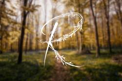 Logo Pauline Royo photographe