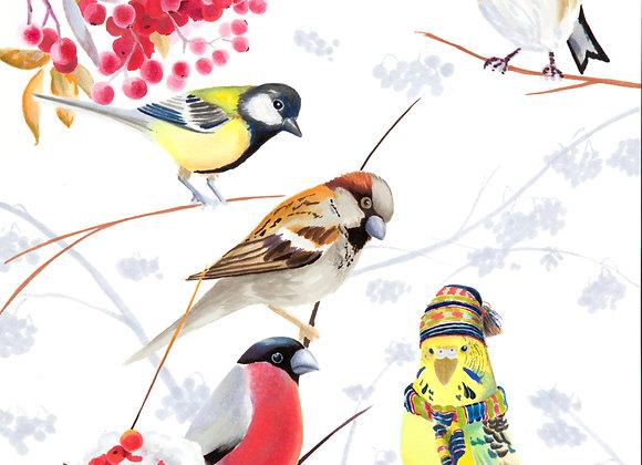 Odd Bird gicléetryck