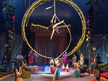Vida: palhaço e circo
