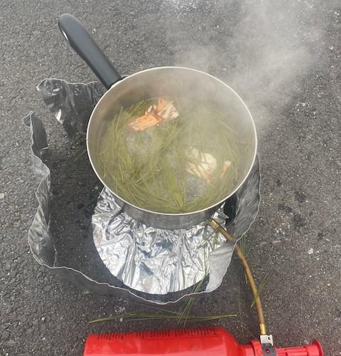 Student-Foraged Birch Tea: Winter 2021