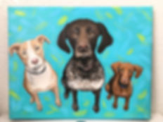 A 3 pup custom pet portrait by Amanda Rose Warren
