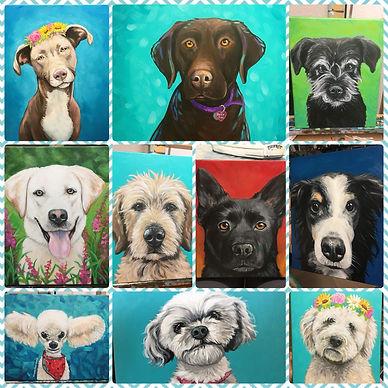 10 previous pet portraits by Amanda Rose Warren