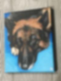 A cutsom pet portrait with a blue background by Amanda Rose Warren