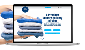 express laundry website.png