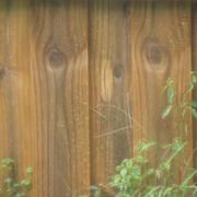 Hair+Peace+Wood+fence.jpg