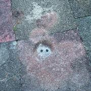 pavement.jpeg