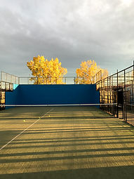 A beautiful padel tennis court near sunset with autumn leaves on the trees