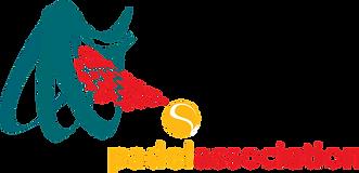 APA Logo curves.png