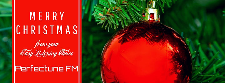 Merry Christmas FB banner.jpg