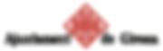 rizoma_logo_ajuntamentdegirona.png