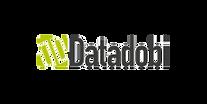 logo_datadobi.png
