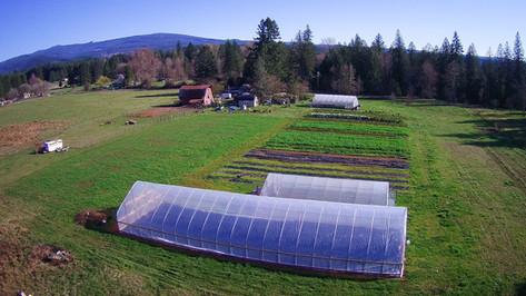 Farm Overview.jpg
