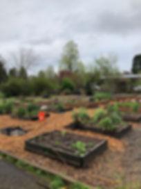 GardenVOL.jpeg