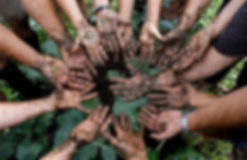 volunteersdirtyhands.JPG