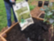 GardenVol1.JPG