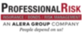 Pro Risk logo jpeg.png