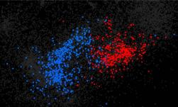자폐증에 영향을 끼치는 유전자는 무엇? 딥러닝을 통한 새로운 의학 연구 접근법