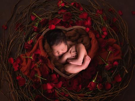 Valentine's Newborn Mini Sessions