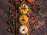 pumpkin_6.jpg
