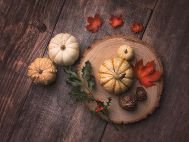 Pumpkin_5.jpg