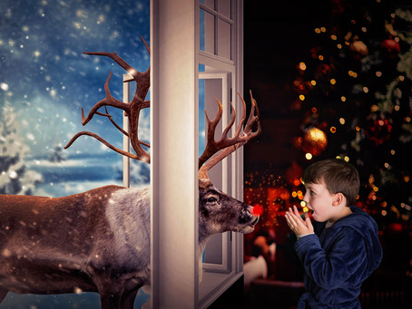 New for 2020 : Meeting Rudolph and A Present From Santa