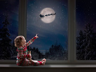 Christmas Sessions by Little Pip Photography