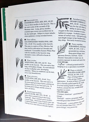 GardenBook_pg128.jpg