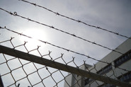 barbed_wire_chain_link.jpg