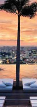 singapore_amber_singapore3.png