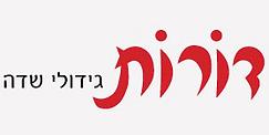 לוגו דורות.png