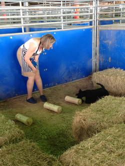 Barn Hunt 2015- Kelwyn