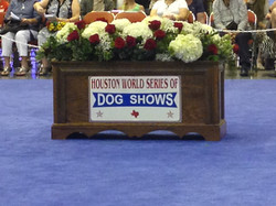 World Series of Dog Shows 2016