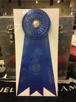 Terrier Group Win Kelwyn