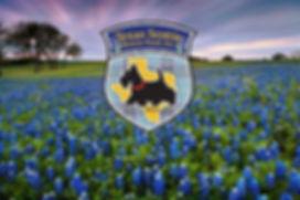 Bluebonnet Logo.jpg