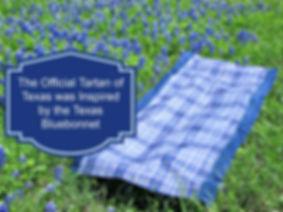 TX Bluebonnet Tartan-Final.jpg