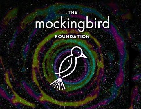 Grant from the Mockingbird Foundation