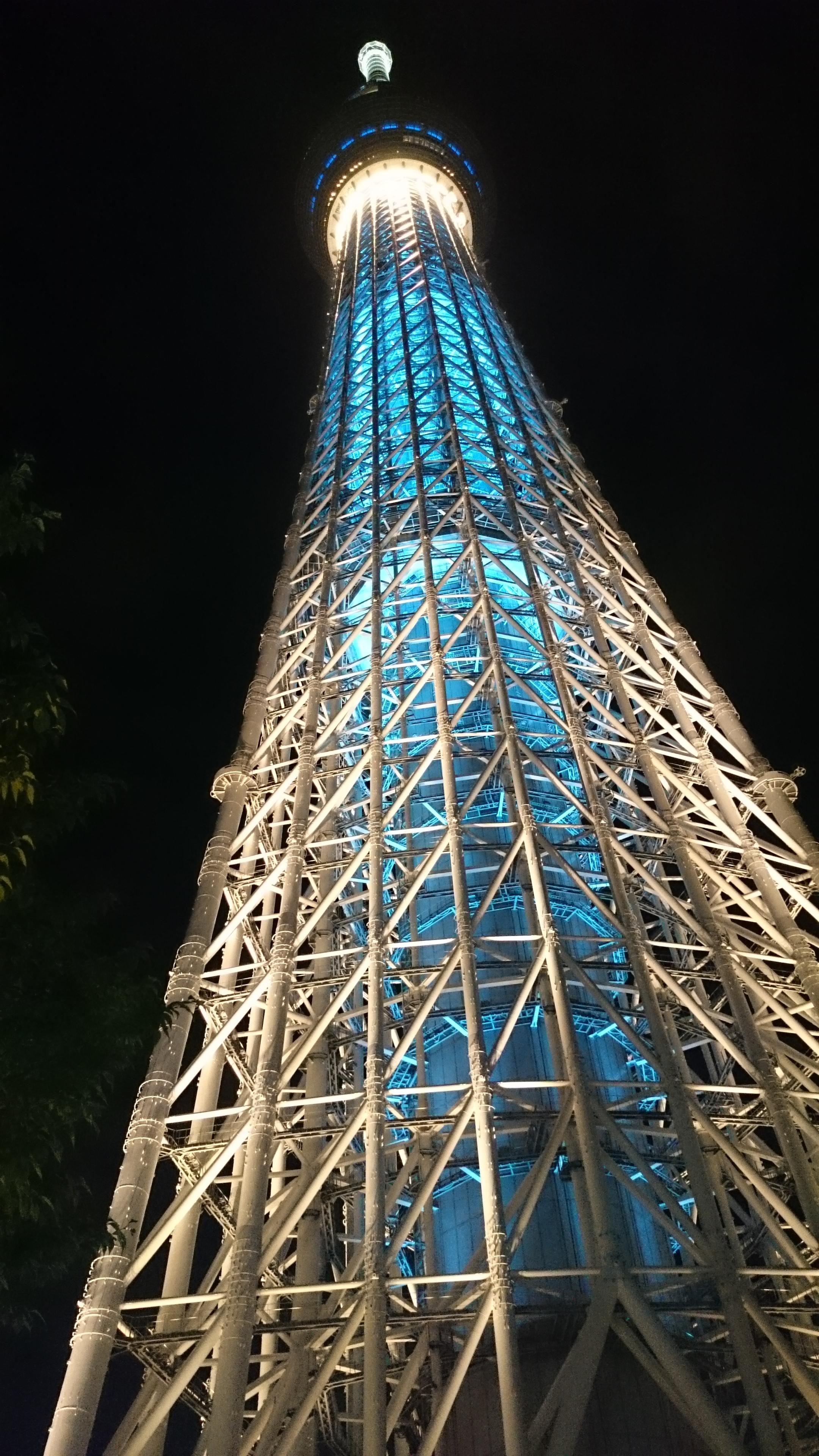 11D-Tokyo13