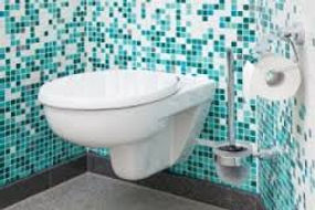 PSL Toilet repair plumber