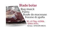 BladeBolar.jpg