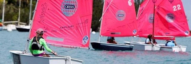 sbc opti pink sails_edited_edited.jpg