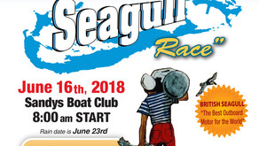 Round Island Seagull Race 2018