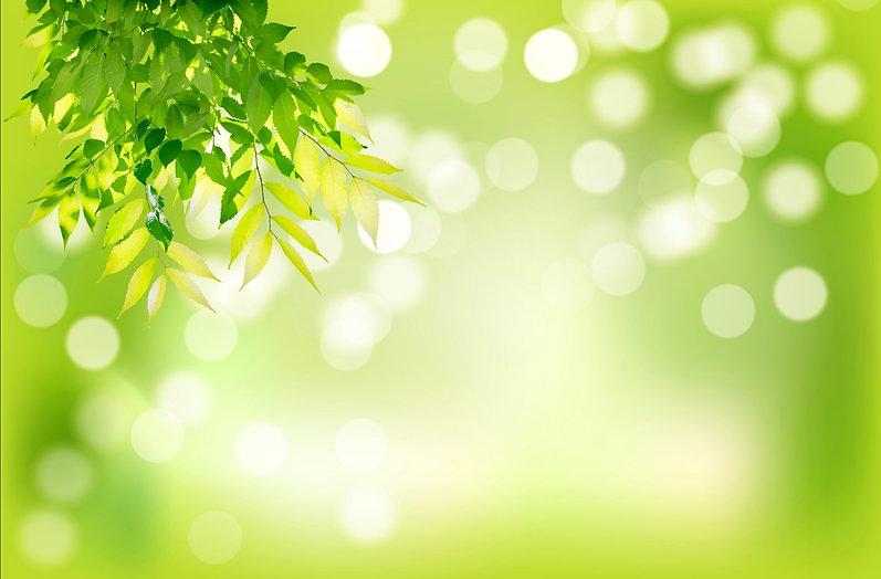 Green%20leaves_edited.jpg