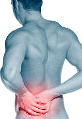 Chiropractors in crystal lake il