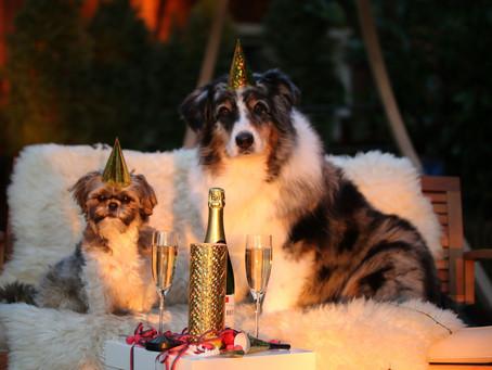So halten Sie Ihre Neujahrsvorsätze ein